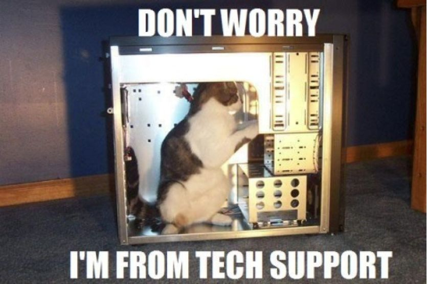 tech support kitty