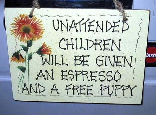 kid coffe dog