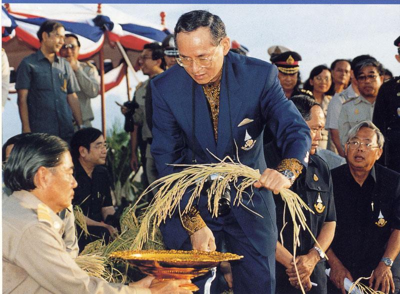 Rama IX Rice Festival