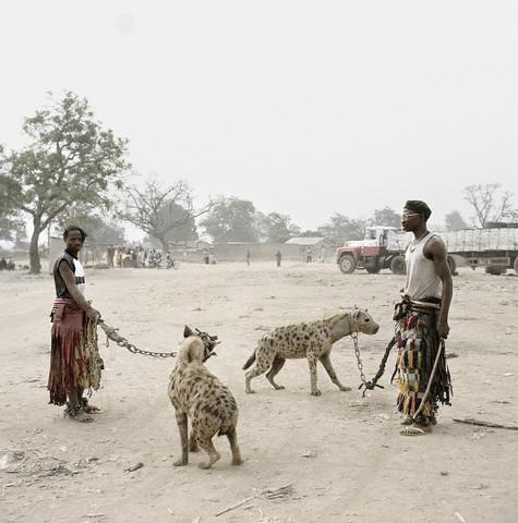 hyenadudes
