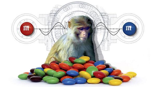 monkeym&m