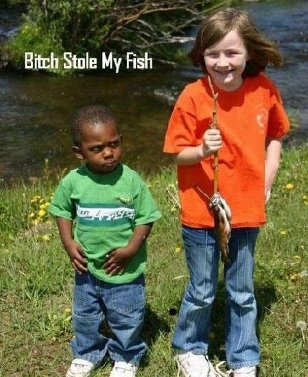stole my fish