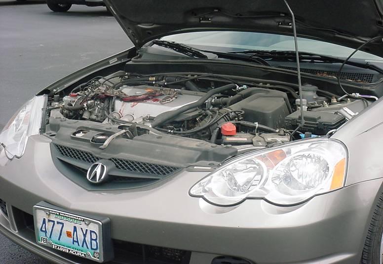 snakecar1