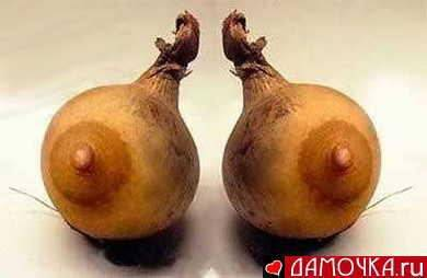 nipple gourds