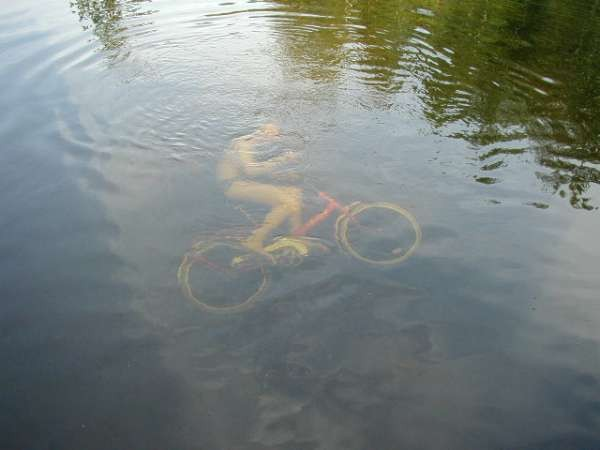 swamp bike