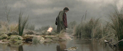 Frodo water