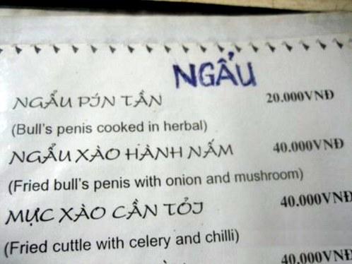 fried bulls penis