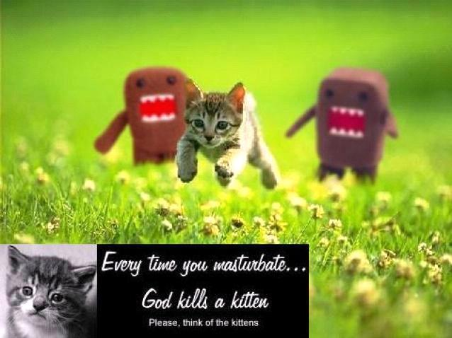 kills kittens
