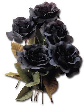 http://loscuatroojos.com/wp-content/uploads/2008/09/black-roses-clrd.jpg
