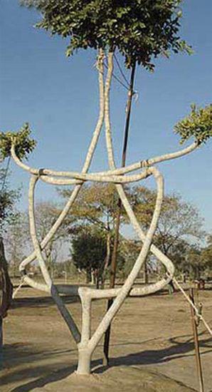 Tree form1