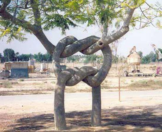 Tree form6