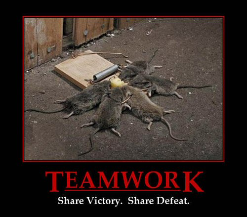 Team Work