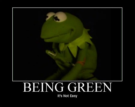 Junkie Kermit