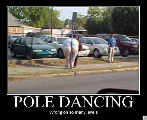 Pole Butt