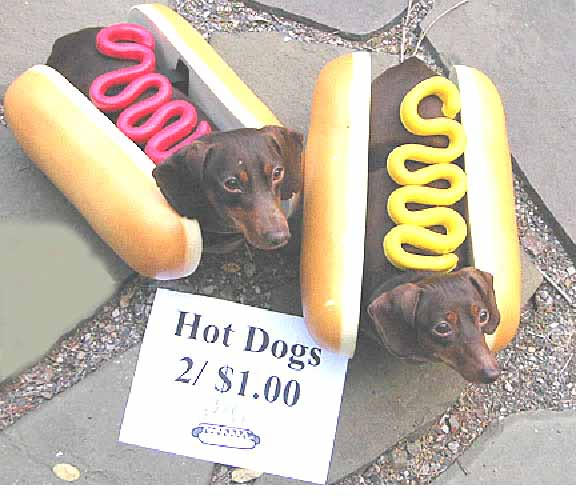 pet-costume-hotdogs