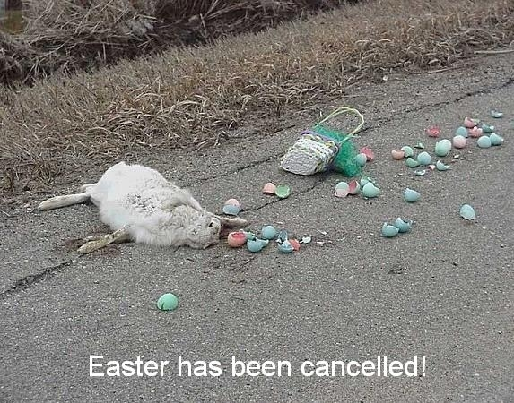 dead-easter-bunny