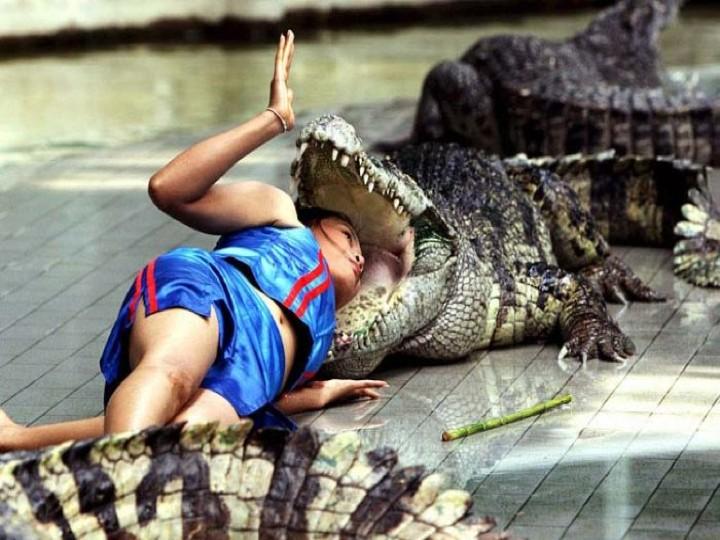 croc-kid