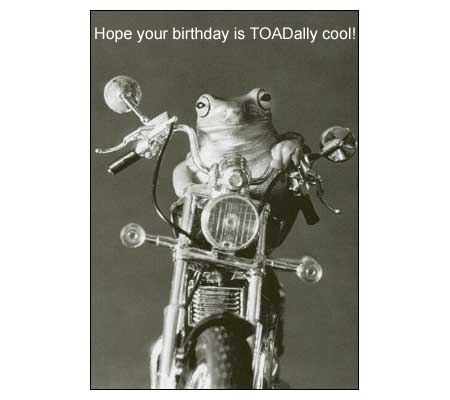 funny-birthday-toadally