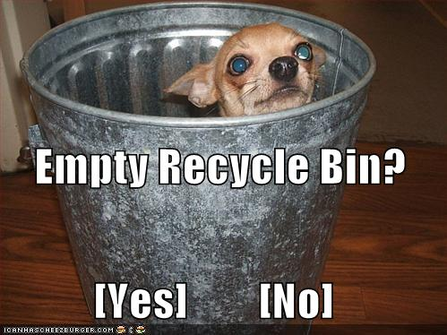 recycle-bin-dog