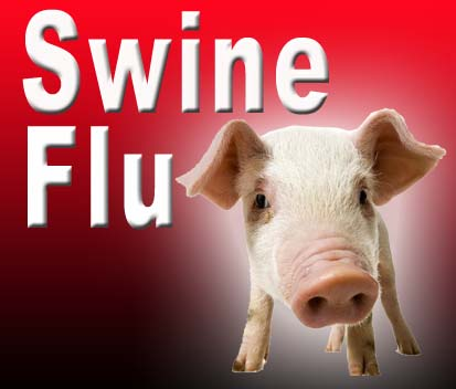 swine-flu