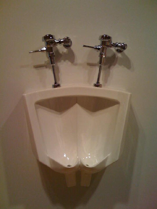 double urinal