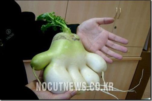hand_eggplant