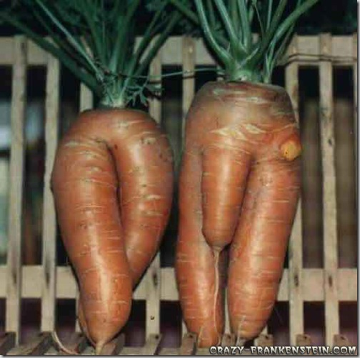 carrot_couple
