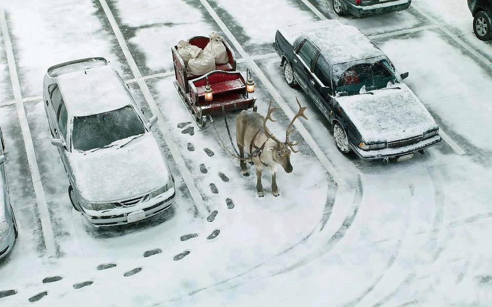 parked sleigh