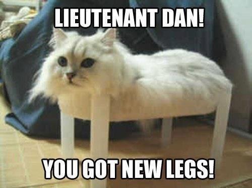 Lt Dan