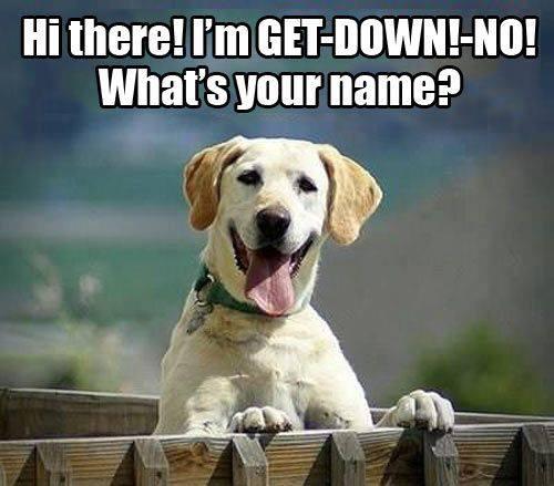 get down no